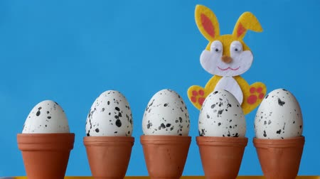Easter bunny is hiding behind flower pots with set eggs. Free space to add text.