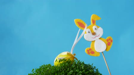 rabbit ears : The Easter bunnies found Easter eggs. Free space to add text.
