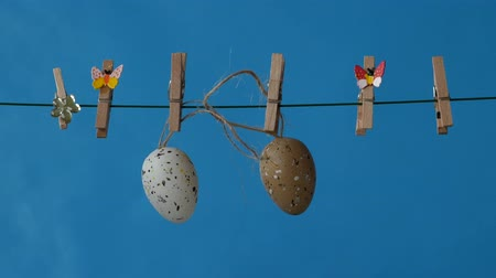 üdvözlet : The easter egg is hanging on the clothesline on a blue background. Free space to add text. Stock mozgókép
