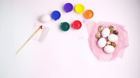 egg laying : Chicken and quail eggs nest and paint on white background happy easter craft concept