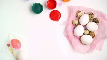 Chicken and quail eggs nest and paint on white background happy easter craft concept