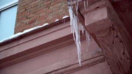 melts : Winter Icicles Melting on the Roof Under the Spring Sun and Dripping from their Tips falling hazard Stock Footage