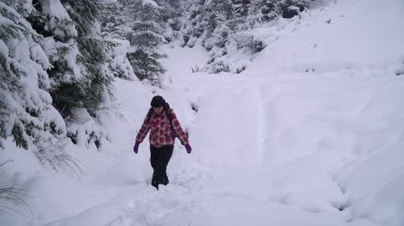 hátizsákkal : A young woman walks alone through a snowy forest. Young pretty tourist sneaks through the snow drifts. She looks around her. Woman playing with snow. Snowfall. Evening forest.
