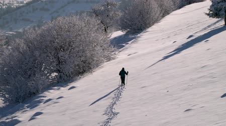 альпинист : A lone tourist walks through the snow in a mountain forest. Traveler in the winter snowy forest. A young man with a backpack wanders through the snow-capped mountains. Стоковые видеозаписи
