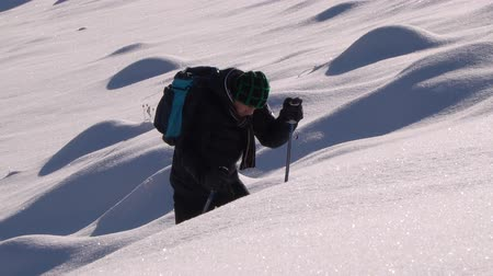 dağcı : A lone tourist walks through the snow in a mountain forest. Traveler in the winter snowy forest. A young man with a backpack wanders through the snow-capped mountains. Stok Video