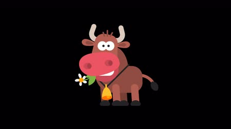hoofs : Ox Funny Animal Character Chinese Horoscope. Motion graphics. Transparent background.