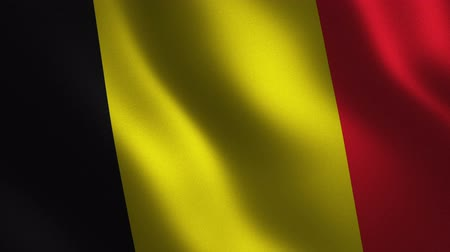 Belgium flag waving 3d. Abstract background. Loop animation. Motion graphics Stok Video