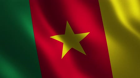 Cameroon flag waving 3d. Abstract background. Loop animation. Motion graphics