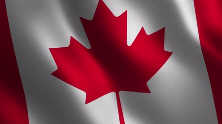 Canada flag waving 3d. Abstract background. Loop animation. Motion graphics Stok Video