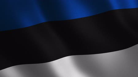 Estonia flag waving 3d. Abstract background. Loop animation. Motion graphics