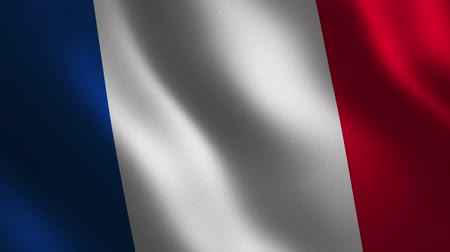France flag waving 3d. Abstract background. Loop animation. Motion graphics Stok Video