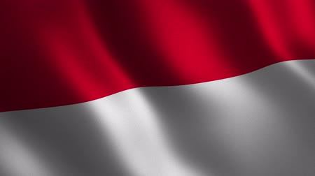 Indonesia flag waving 3d. Abstract background. Loop animation. Motion graphics