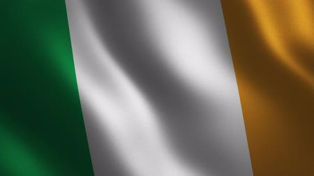 Ireland flag waving 3d. Abstract background. Loop animation. Motion graphics Stok Video