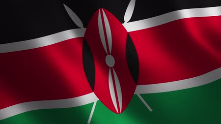 Kenya flag waving 3d. Abstract background. Loop animation. Motion graphics