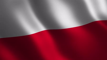lengyelország : Poland flag waving 3d. Abstract background. Loop animation. Motion graphics