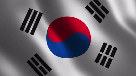 South Korea flag waving 3d. Abstract background. Loop animation. Motion graphics Stok Video