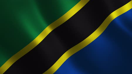 Tanzania flag waving 3d. Abstract background. Loop animation. Motion graphics