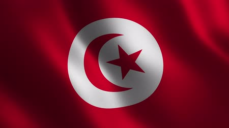 Tunisia flag waving 3d. Abstract background. Loop animation. Motion graphics