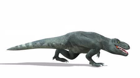 extinct species : 3D CG rendering of Dinosaurs Stock Footage