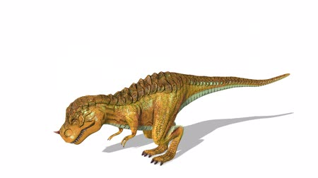 dinosaur : 3D CG rendering of Dinosaurs Stock Footage