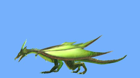 странный : 3D CG rendering of Flying Dragon Стоковые видеозаписи