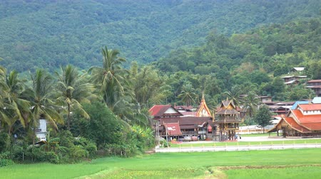relics : The old temple of the Sangha is over 400 years old, it is the temple of Sri Pho Chai in Thailand. Stock Footage