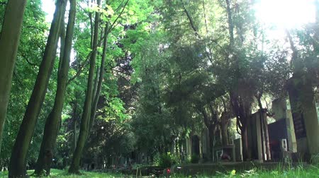 cseh : Czech Cemetery in Prague. Camera Slider.