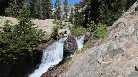 ribeiro : Rocky Mountain National Park in Colorado, USA. Alpine stream.  Stock Footage