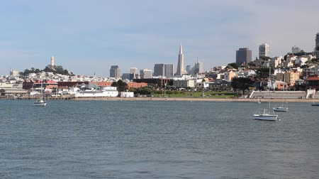 san francisco : San Francisco, California, United States - city skyline view. Stock Footage