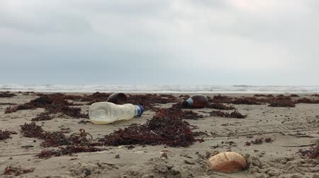отходы : Empty Plastic Bottles on the Shore, Litter on the Beach