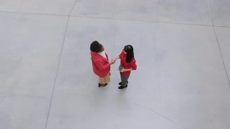 Two Women Greets Each Other By Shaking Hands