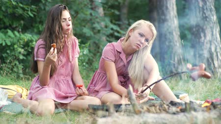 кемпинг : Two young women in pin up style having fun at a picnic in the park in the sunset. Summer, holidays, vacation, happy people concept - smiling girlfriends. Girlfriends on picnic. Стоковые видеозаписи