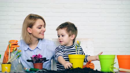 blízkost : Concept of planting. The family plant summer flowers in pots. Mother and son plant flowers in colored pots in the summer.