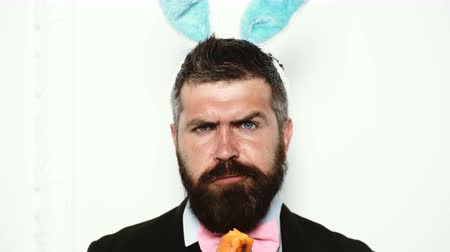 espetacular : Bearded man wearing a suit and with ears of a rabbit eat carrots and shows different emotions. Funny man with rabbit ears.