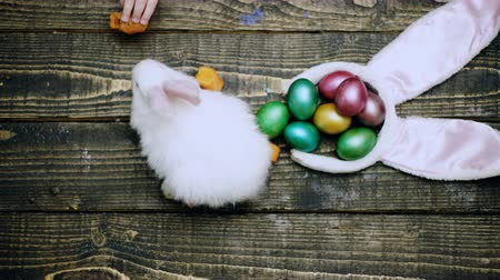koszyk wielkanocny : Happy easter. Close-up of a rabbit on a table that eats carrots near Easter eggs. Close-up of a boys hand that feeds the Easter hare. Easter hare and eggs on the table. Wideo