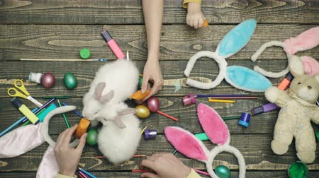 rabbits : Happy easter. Mother, father and their son painting Easter eggs. Happy family preparing for Easter. Close-up of family hands that paint Easter eggs and feed rabbits. Stock Footage