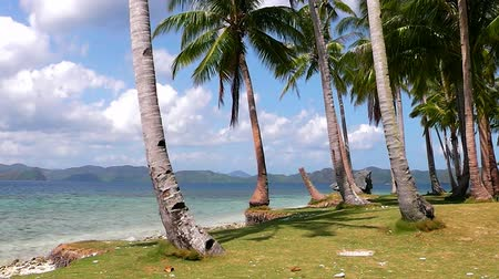 The coast of the tropical island. El Nido. Philippines.