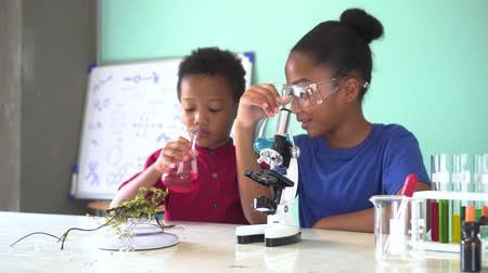 lesson : Two African American mixed kids testing chemistry lab experiment and holding glass tube flask along with microscope on table and smile in science classroom Stock Footage