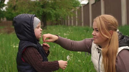 chusteczki : Mom wipes her face a little boy after playing with a dandelion. Mother and son playing with dandelions in the spring Park after a rain. Wideo