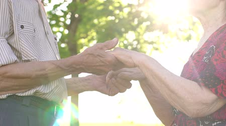 senior lifestyle : Close-up of the hands of the old grandparents in the sunny Park. Close-up grandma and grandpa holding hands in the Park at sunset. Stock Footage