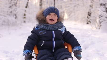 luge : Portrait of laughing happy boy sitting in a sled in the winter in the woods. Stock Footage