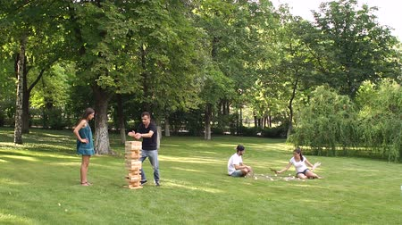 tık : Group of young people playing active games in the Park. Stok Video