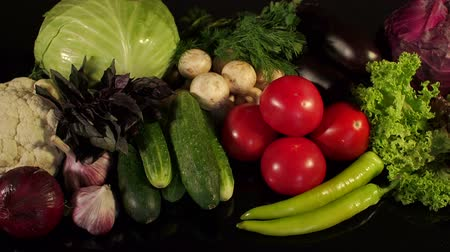 erva doce : Fresh vegetables and greens close-up on a black background. Slow camera movement from left to right. Vegetarian food - cabbage, onion, tomato, cucumber, pepper, lettuce, fennel, mushrooms, eggplant. Vídeos