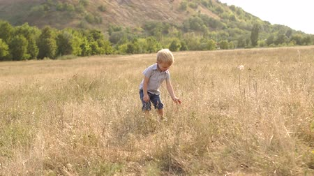 plucks : Little happy boy running through a dry field and plucks the dry grass.