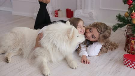 huskies : Mother and daughter and a dog lying on the floor near the Christmas tree, the dog licks the face of mother. Little girl hugging a dog with decorated Christmas tree in the background. Stock Footage