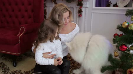 huskies : Happy mother with her little daughter playing on the floor with the big white dog next to a decorated Christmas tree. Big happy family celebrates Christmas with a dog at home.
