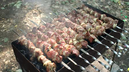 repast : Pork barbecue on skewers on top of charcoal grill in the end of the cooking process. The cook prepares a shish kebab on the grill outdoors, he pours meat sauce. Stock Footage