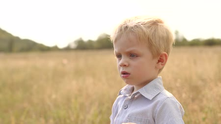 hides : Pensive little boy stands in a field at sunset. Portrait of an emotional boy outdoors in summer at sunset.