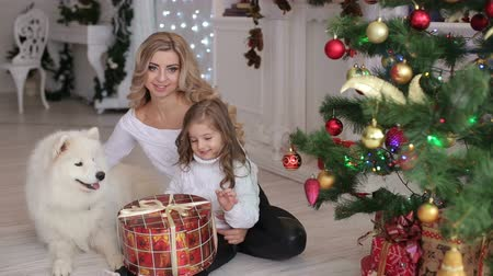 сочельник : Happy family with dog, mother and daughter, on the eve of new year and Christmas holidays playing and having fun at home.