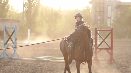 galope : Little girl of 4-5 years in a helmet is engaged in riding a horse farm at sunset in autumn. Slow motion. Vídeos